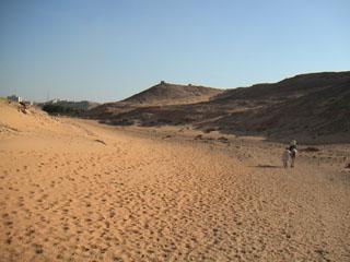 rep_egypt03_rakuda02.jpg